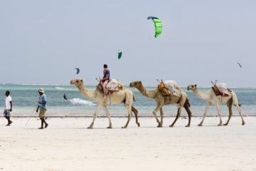 Kite Camp Diani Beach Kenya